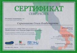 Сертификат об участии в Work Shop